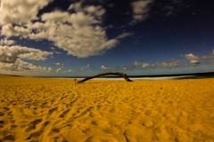 Photo_Landscape09
