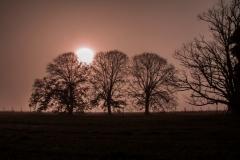 Photo_Landscape10