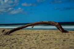 Photo_Landscape13